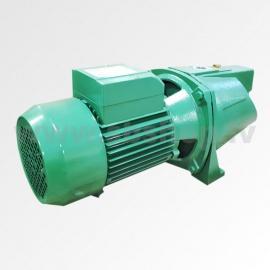 Ūdens sūknis JSW-750 AKCIJA